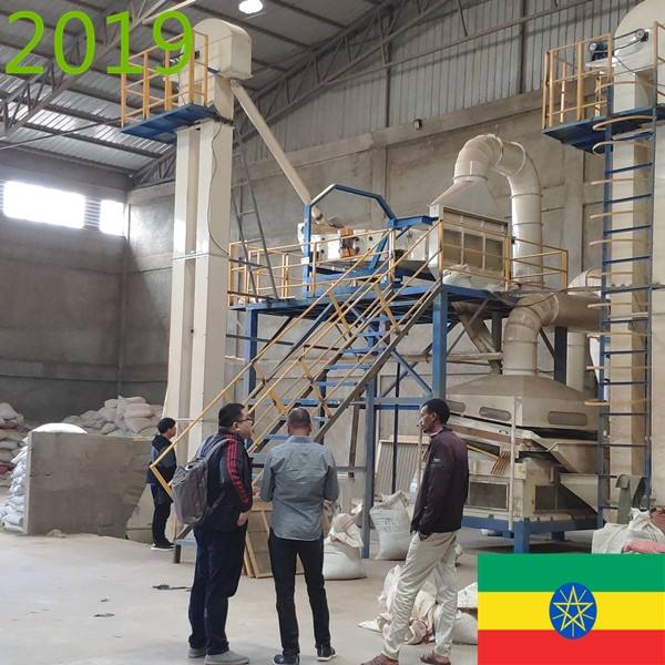 SYNMEC 7T/H Sesame and 12T/H Pulses Cleaning Plant In Ethiopia At 2019