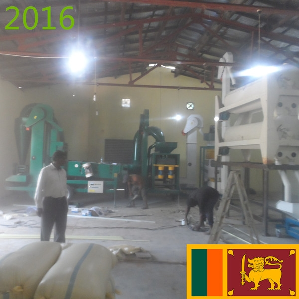 SYNMEC 3T/H Paddy Seed Processing Plant
